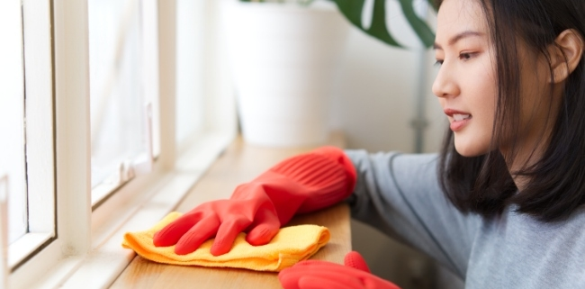 Professional Cleaning Companies For Easier & Safe Window Cleaning Work In Atlanta
